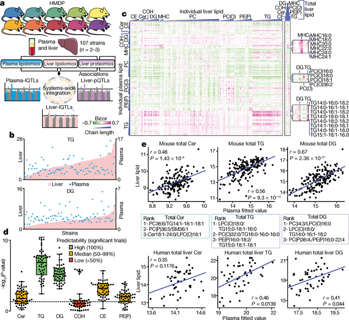 An integrative systems genetic analysis of mammalian lipid metabolism.